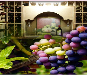All Wine Cellars - Mobile friendly Store